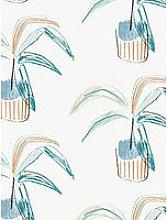 Scion Crassula Wallpaper