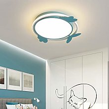 SDDS Dimmable Round Children's Room LED
