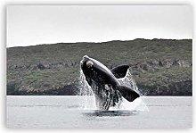 Sea Animal Whale Print Ocean Wall Art Whale
