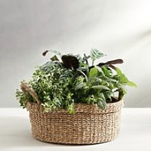 Seagrass Small Round Basket, Natural, One Size