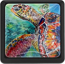 Seaturtle Swimming, 3 Pcs Crystal Class Cabinet