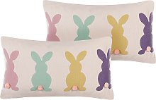 Set of 2 Cotton Scatter Pillows Cushions