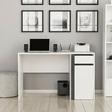 Shae Desk - with Shelves, Drawer, Door - for