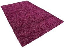 Shaggy Area Rugs: Purple/150cm Circle