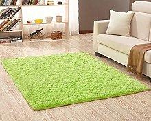 Shaggy Fluffy Rugs Soft Anti-Skid Area Rugs Floor