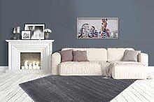 Shaggy Shaggy Rug Soft Fluffy Bedroom Grey Silver