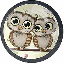 Shiiny Two Cute Cartoon Owls Drawer Knob Pull