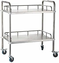 ShiSyan Trolley On Wheels 2 Tier Stainless Steel