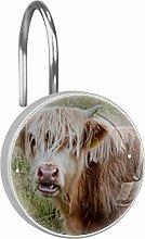 Shower Curtain Hooks,High Land Beef Cattle