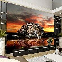 Sijoo Photos, wallpapers, leopard-print