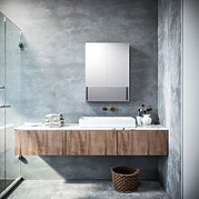 Silver Double Mirror Wall Mounted Cabinet, 800 x