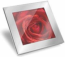 Silver Glass Coaster - Red Rose Macro Shot Water