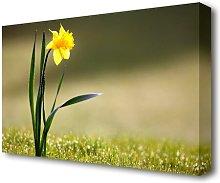 Single Daffodil Flowers Canvas Print Wall Art East