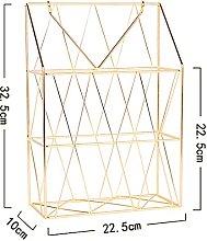 SJZERO Wall Mounted Rack Metal Wire Magazine