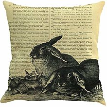 Skang Easter Bunny Print 45cm*45cm Sunday Throw
