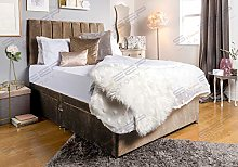 Sleep Factory's Brown Velveto Divan Bed Set &