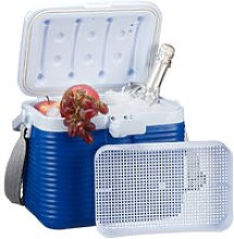 Small Cool Box, With Handle, Carry Strap, Plastic