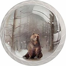 Snowy Forest with Bear Set of 4 Dresser Round