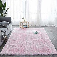 Soft Area Rug for Bedroom, Rug for Living Room,