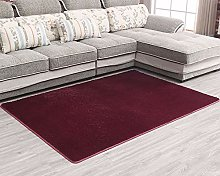 Soft Indoor Area Rugs Shaggy Carpet Washable