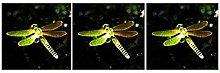 Solar Garden Lights Waterproof IP65 LED Multicolor