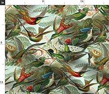 Spoonflower Fabric - Vintage Hummingbird Pattern