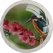 Spring Bird On BranchRound Glass knob White Drawer