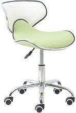 Spring Desk Chair Symple Stuff Colour: Green/White