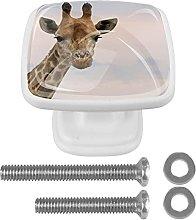 Square Cabinet Knobs Pulls Giraffe Animal Crystal
