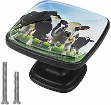 Square Cabinet Knobs Pulls Meadow Cow Crystal
