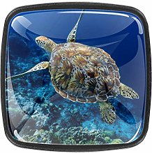 Square Cabinet Knobs Sea Turtle Swimming Above