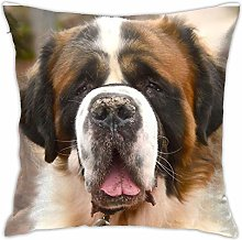 St Bernard Dog - Ready For A Hug! Pillow Cover