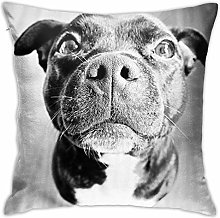 Staffy! Pillow Cover Decorative Cushion Cover