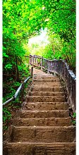 Stairs from Nature I Door Wall Mural East Urban