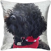 Stanley The Little Black Cockapoo Pillow Cover