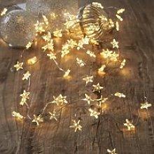 Star Fairy Lights - 40 Bulbs, Clear, One Size