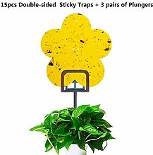 Sticky Fly Traps for Plant Insect Like Fungus