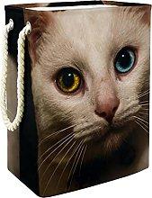 Storage Basket Cute Cat 015 Nursery Hamper Kids