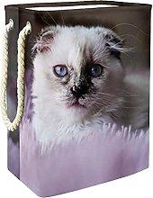 Storage Basket Cute Cat 016 Nursery Hamper Kids