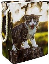 Storage Basket Cute Kitten 08 Nursery Hamper Kids