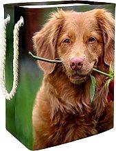 Storage Basket Dog And Rose Nursery Hamper Kids