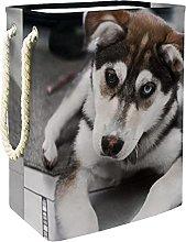 Storage Basket Husky 09 Nursery Hamper Kids