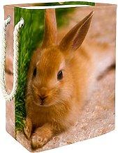 Storage Basket Rabbit And Grass Nursery Hamper