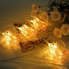 String Lights LEEDY Clearance Sale! Creative