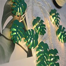 String Lights LEEDY Clearance Sale! Turtle Leaf