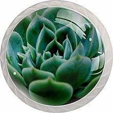 Succulent Plants Cabinet Door Knobs Handles Pulls