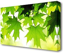 Summer Leaves Flowers Canvas Print Wall Art East