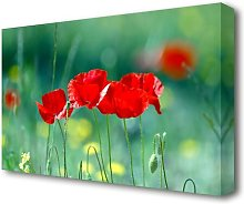 Summer Poppies Flowers Canvas Print Wall Art East