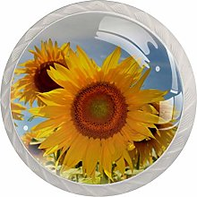 Sunflower Blooming Yellow 4 Pieces Crystal Glass