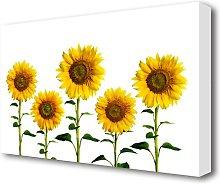 Sunflower Mayhem Flowers Canvas Print Wall Art